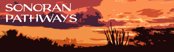Sonoran UCEDD Newsletter with a desert sunset background